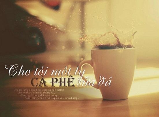 stt cafe