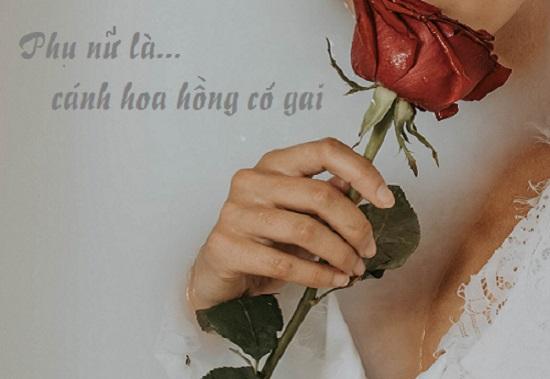 tus về hoa hồng