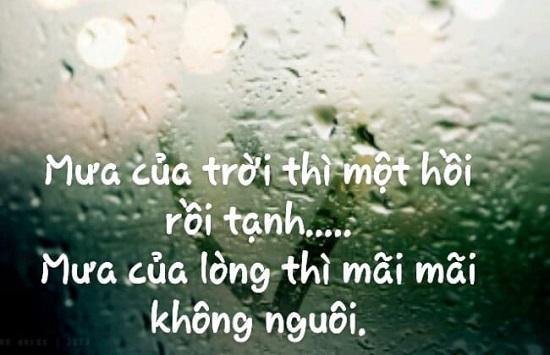 tus ngày mưa